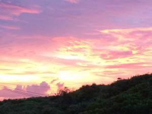 今朝、病院から綺麗な日の出を見れました。 今日も素敵な1日になりそうです。